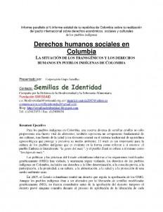 Seiten aus parallelbercht Kolumbien - spanisch
