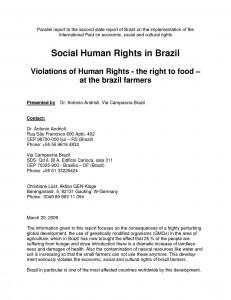 Seiten aus parallelreport Brasilien engl_ Endf_