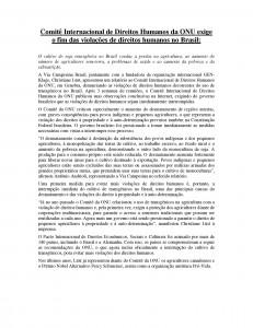 parallelreport Brazil - PM spanisch
